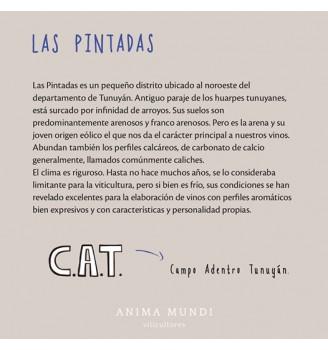 CAT LAS PINTADAS PETIT VERDOT 750CC